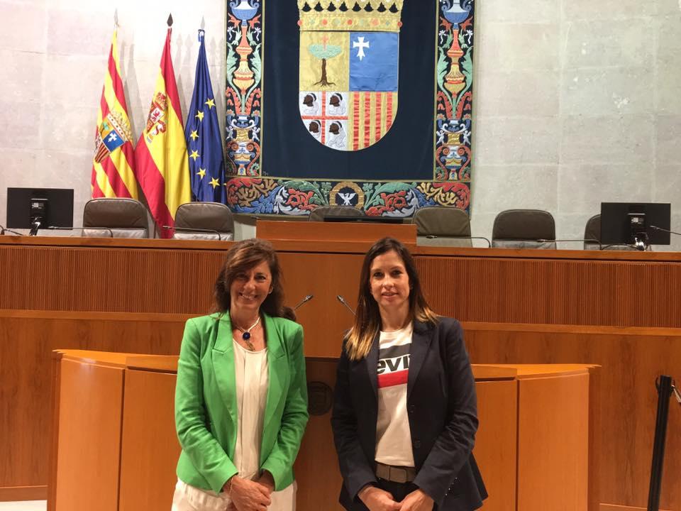 Fundación Filia en las Cortes de Aragón presentando la figura del Coordinador Parental.