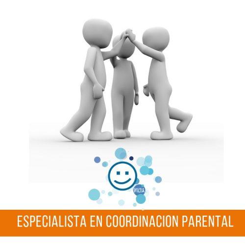 Cursos de Especialistas en Coordinación Parental